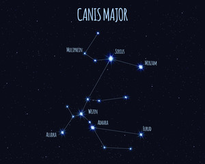 Canis Major (The Great Dog) constellation, vector illustration with the names of basic stars against the starry sky