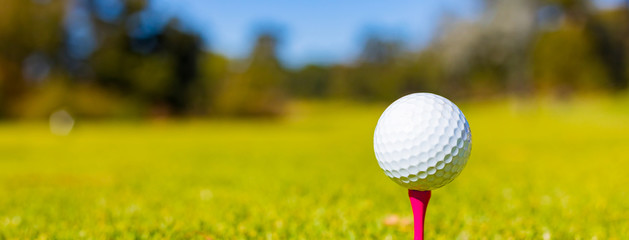 Golf Ball on a Tee at a Golf Course