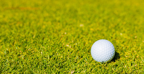 Golf Ball on a Fairway green at a golf course