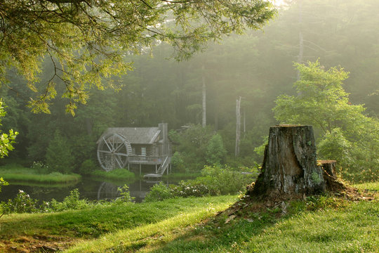 Old watermill building in lush forest on dewy morning