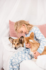 adorable child sitting on bed with pembroke welsh corgi dogs at home