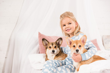 child sitting on bed with pembroke welsh corgi dogs and looking at camera at home