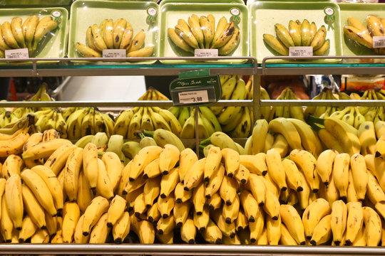 Cesta básica; banana e abrobrinha-foto; Rogério Marques