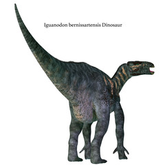 Iguanodon Dinosaur Tail with Font - Iguanodon was a herbivorous ornithopod dinosaur that lived in Europe during the Cretaceous Period.