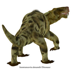 Inostrancevia Dinosaur Tail with Font - Inostrancevia was a carnivorous cat-like dinosaur that lived in Russia during the Permian Period.