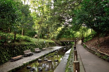 柿田川公園 遊歩道