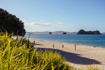 Autocollant pour porte Cathedral Cove Te Whanganui