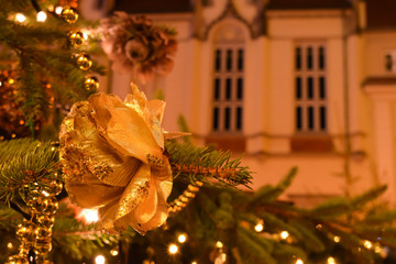 Christmas decoration, golden rose on a pine-tree. Night cityscape during Christmas holidays. Pine-tree branches with light bulbs. View of a historic building in Europe.