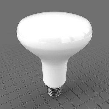 LED bulged reflector bulb