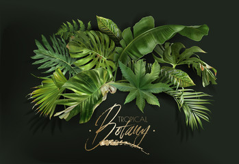 Vector banner with green tropical leaves on green