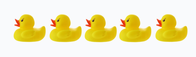 Five ducks in a row with clipping path
