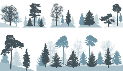 Group of different trees (spruce, pine, oak, maple, etc.) in forest or in park, isolated on white background. Vector illustration.