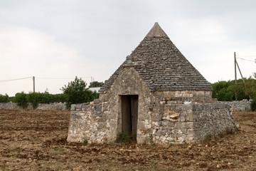 Panorami tra Turi e Putignano (Puglia)