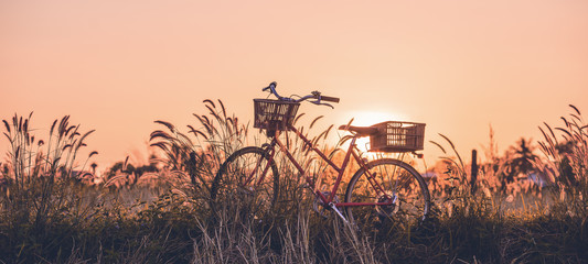 Poster de jardin Velo beautiful landscape image with Bicycle at sunset
