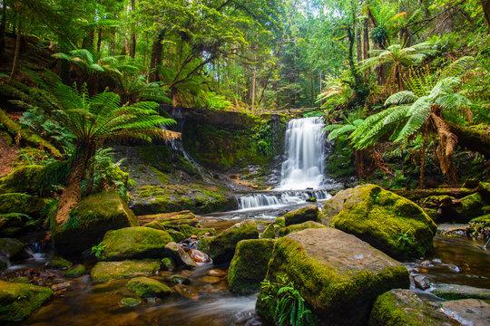 Horseshoe falls in Mount Field National Park in Tasmania, Australia