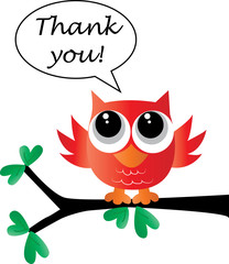 thank you from a sweet little owl