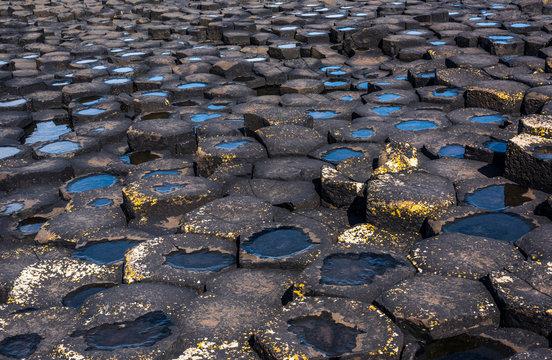 Closeup of hexagonal basalt columns of Giant's Causeway, Northern Ireland