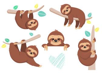 Set of joyful sloth sitting on a branch. Vector illustration. Cartoon slyle.Isolated on white background