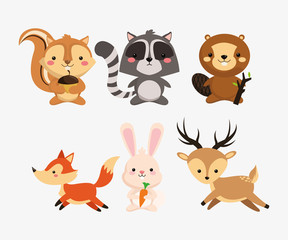 squirrel raccoon beaver fox rabbit and deer icons image