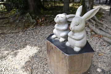 ウサギ 出雲大社