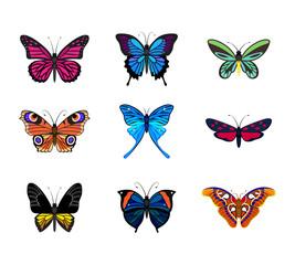 Various types of realistic butterflies: Peacock, Queen Alexandra, Mariposas Azules, Monarch Butterfly, Zygaena Trifolii, Artemida, Attacus Atlas, Kallima Paralekta Horsfield, Troides Rhadamantus