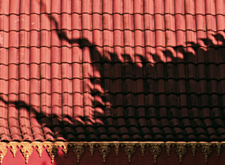 shadow on asian roof