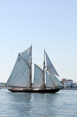 Tall Ship Sails Past Under Blue Sky