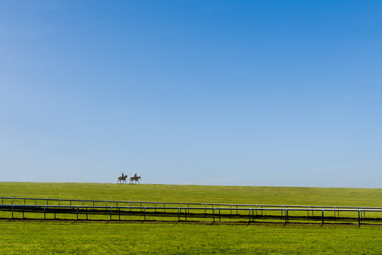 Two horses after working on the Warren Hill racehorse training gallops at Newmarket, England.