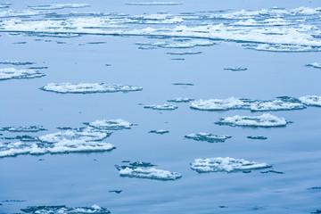 Ice floe in the Wisla river, lubelskie region, Poland