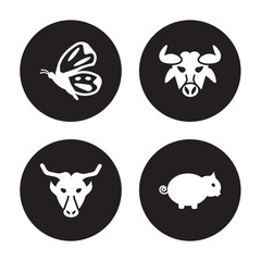 4 vector icon set : Butterfly, Buffalo, Bull, Boar isolated on black background