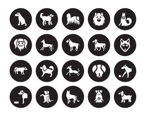 20 vector icon set : Vizsla dog, Fox Terrier German Shepards Goldador Golden Retriever Jindo Irish Setter Greyhound Hovawart dog isolated on black background