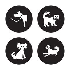 4 vector icon set : Pitbull dog, Papillon Pekingese Otterhound dog isolated on black background