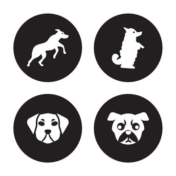 4 vector icon set : Rhodesian Ridgeback dog, Puggle Pumi Pug dog isolated on black background