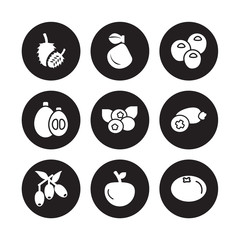 9 vector icon set : Ugli fruit, Soursop, Jujube, Feijoa, Cranberry, Nance, Loquat, Yuzu isolated on black background