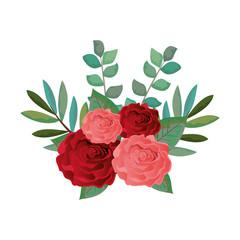 beautiful rosebush decoration icon