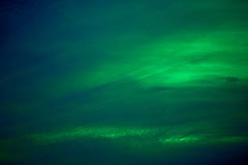 Vivid tropical sky. Green color natural background.