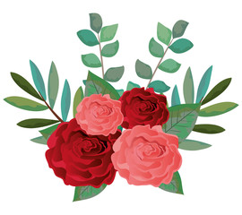 beautiful rosebush decoration icon