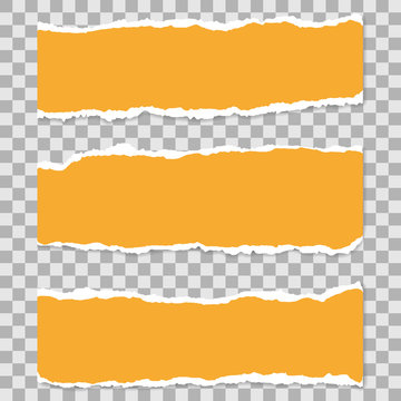 Long Horizontal Torn Off Pieces of Paper. Empty Isolated Edges set on Transparent Background. Template for Advertising. Vector Illustration