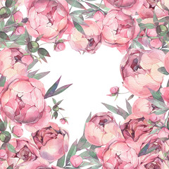 Peonies. Hand painted watercolor illustration. Background.
