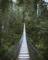 Suspension Bridge in Green Forest