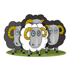 Stock Illustration Herd of Rams