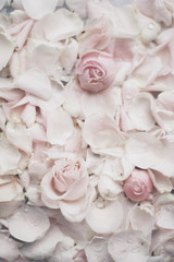 rose flower petals on marble - wedding, holiday and floral garden styled concept
