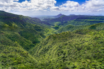 Black River Gorges National Park on Mauritius island. The park contains most of the islands remaining rainforest.
