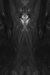 Dark modern photography folding symmetric background texture.