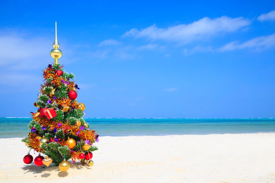 Christmas tree on the beach with blue sky, white sand and blue ocean in the background