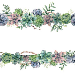 Watercolor floral banner with succulents, tree branch and eucalyptus. Hand painted cacti, eucalyptus leaves and branches isolated on white background.  Botanical illustration for design, print.