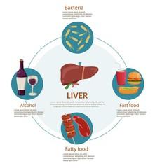 Causes of Liver Disease infographics medical background illustration