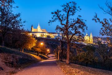 Evening view of illuminated Prague Castle, Prazsky Hrad, from Petrin Gardens, Prague. Czech Republic.