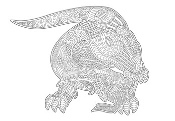 Adult coloring book page with mythical lizard