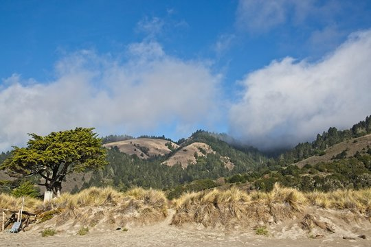 Stinson Beach, Marin County beautiful coastline with a blue sky and beautiful cloud formation